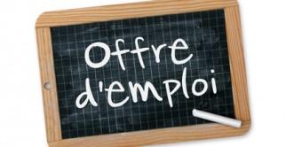 Offre d'emploi: Adjoint (e) au Responsable des Services Techniques